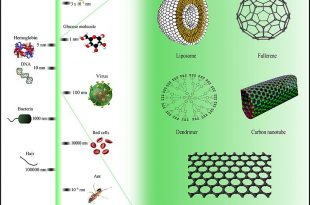 Comparison of nanomaterials_sizes