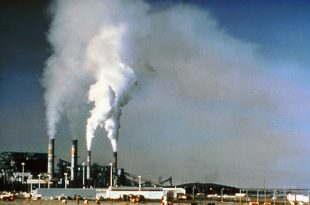 economic benefits and environmental costs